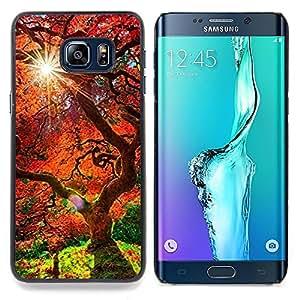 SKCASE Center / Funda Carcasa protectora - Árbol rojo viejo;;;;;;;; - Samsung Galaxy S6 Edge Plus / S6 Edge+ G928