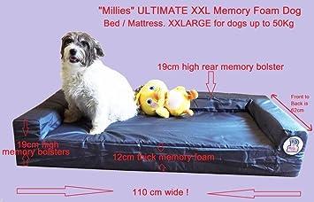 """Cama ortopédica para perro """"Millies"""" Ultimate xxl de lujo, colchón de sofá"""