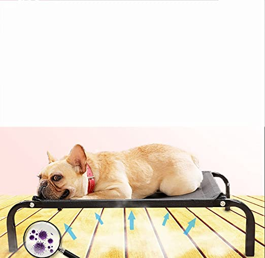 Amazon.com: MEIQI Dog Cot | Elevated Pet Bed | Mesh | Variety of Sizes,Large: Sports & Outdoors