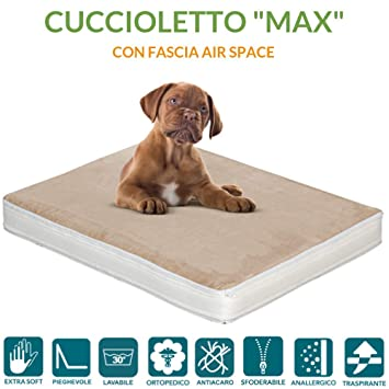 evergreenweb – colchón Cama para Perro O Gato de Varias Tallas, Alto 10 cm Relleno