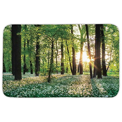 Rectangular Area Rug Mat Rug,Farm House Decor,Sunny Forest with Wild Garlic Enchanting Wildflowers Blossoms Landscape Scene,Green White,Home Decor Mat with Non Slip Backing by iPrint