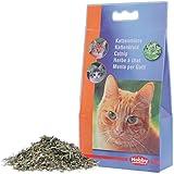 Nobby 77501 Katzenminze