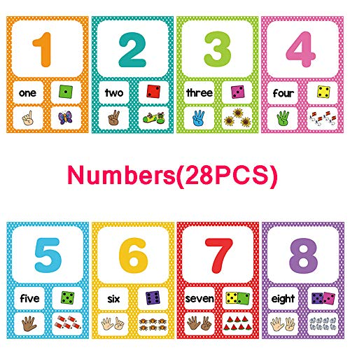 Richardy 28Pcs/Set Numbers 1-100 Flash Cards - Math Counting Card - Learn English Pocket Card - Pocket 100 Flash Cards