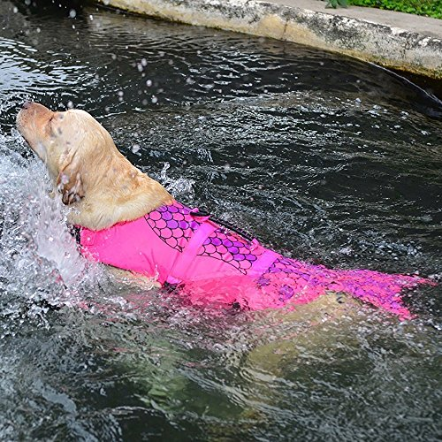Pictures of Queenmore Dog Life Jacket Ripstop Lifesaver Coat 4