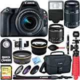 Canon EOS Rebel SL2 24MP DSLR Camera (Black) + 18-55mm & 55-250mm IS II Lens Kit + Accessory Bundle 64GB SDXC Memory + DSLR Photo Bag + Wide Angle Lens + 2x Telephoto Lens + Flash + Remote + Tripod