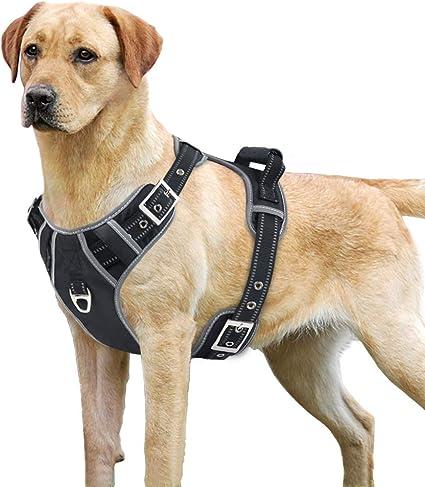 Medium Size Lightweight Comfortable Soft Padded Vest Adjustable No Pull Pet Dog Harness Travel Vest for Outdoor Walking or Training Black Pawaboo Dog Harness
