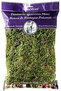 SuperMoss (23802) Mountain Moss Preserved, Fresh Green, 8oz
