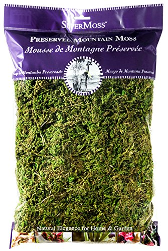 SuperMoss (23802) Mountain Moss Preserved, Fresh Green, 8oz (Basket Spanish Hanging)