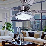 RainierLight Contemporary Simple Ceiling Fan with 5 Metal Leaves for Bedroom/Office/Indoor LED Light Kit 48-Inch(Silver White)