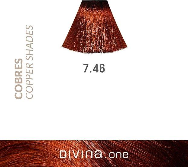 Eva Professional Hair Care Tinte Profesional Divina N.7.46 60 ...