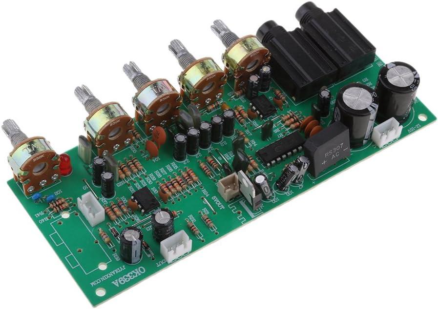 Almencla Amplificador De 12V DC Junta De Amplificador Karaoke Micr/ófono Reverberaci/ón DIY