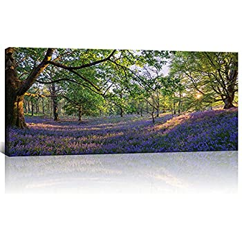 eb30b832ec6c KLVOS - Large Nature Landscape Tree Forest Wall Art Gallery Wrapped Purple  Lavender Flowers Picture Canvas Prints Home Wall Decoration (20