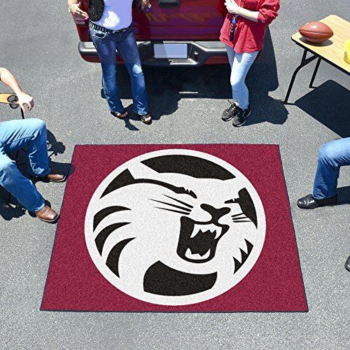 Fan Mats Cal State - Chico Tailgater - Basketball Chico Rug