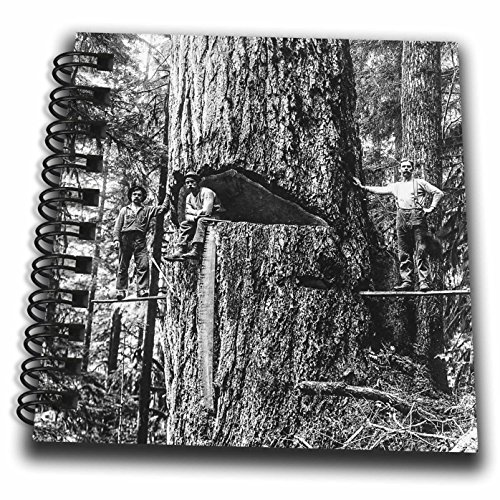 Scenes from the Past Magic Lantern - Vintage Lumberjacks Oregon Giant Douglas Fir Tree Logger Magic Lantern - Mini Notepad 4 x 4 inch (db_246326_3)