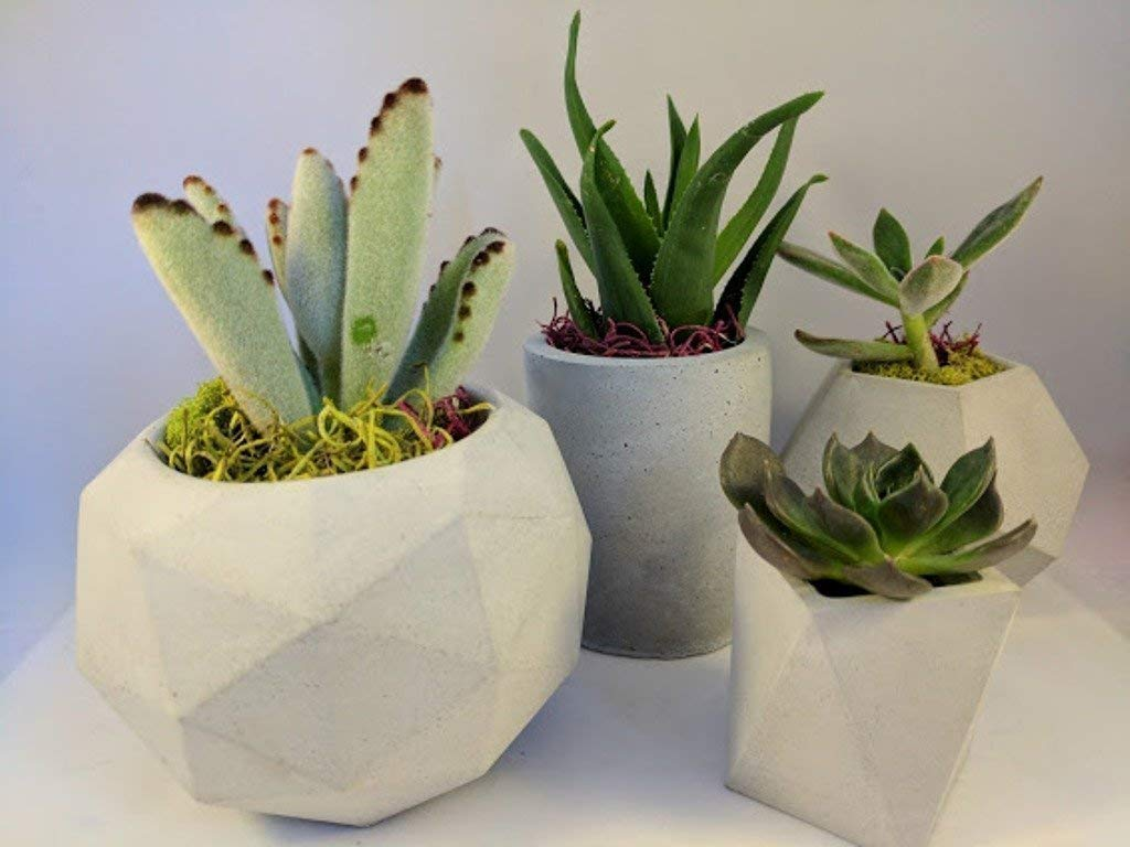 Succulent Planter, Set of 4 Concrete Planter, Geometric Planter, Indoor Pot, Modern Planter