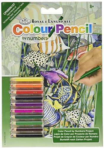 (Mini Color Pencil By Number Kit 5X7-Tropical Fish by Royal Brush )