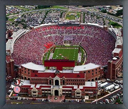 (Doak Campbell Stadium Florida State Seminoles NCAA Photo (Size: 17