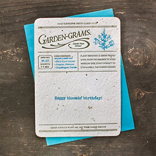 Bloomin Garden Grams Seed Paper Greeting Cards - Wildflower Seed {3 Pack} (Cards Wildflower Seed)