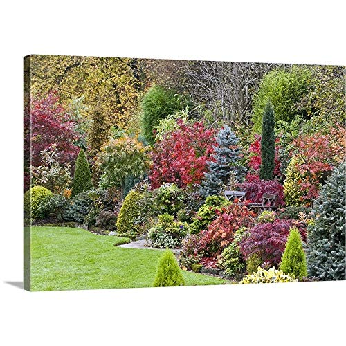 GREATBIGCANVAS Gallery-Wrapped Canvas Entitled Japanese maples and Evergreen shrubs Surrounded by neatly Clipped Lawn, October by 30
