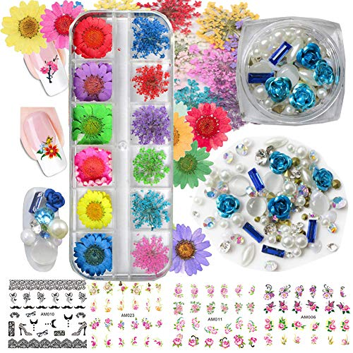 Nail Dried Flowers, 3D Rhinestones Nail Art Decorations Kits, Pearl Crystals Pressed Dry Daisy Flower Nail Jewelry Accessories, Floral Stickers Decals for Nail Design, Craft, Makeup (Decoration Kit B) ()