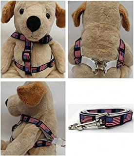 "product image for Diva-Dog 'Stars & Stripes' Custom 5/8"" Wide American Flag Dog Step-in Harness with Plain or Engraved Buckle, Matching Leash Available - Teacup, XS/S"