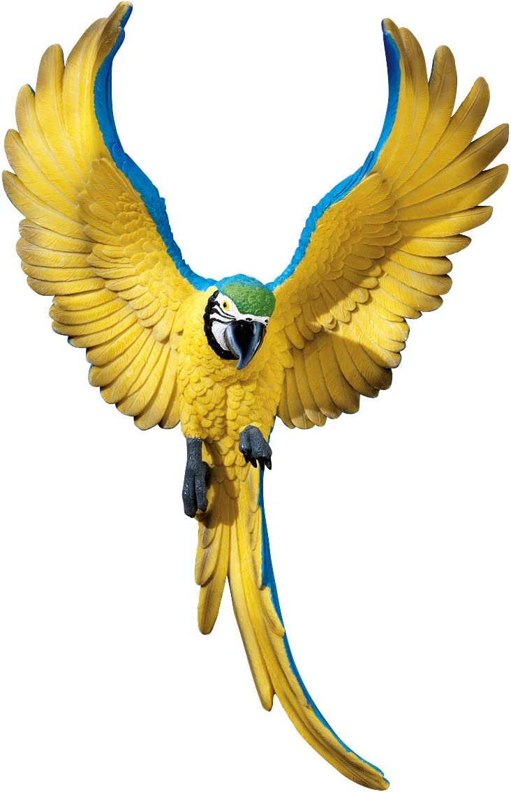 Design Toscano Flapping Macaw Bird Tropical Decor Wall Sculpture, 16 Inch, Polyresin, Full Color