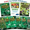 """Garden Herbs Collection"" Heirloom 8 Packets of Open Pollinated Seeds"