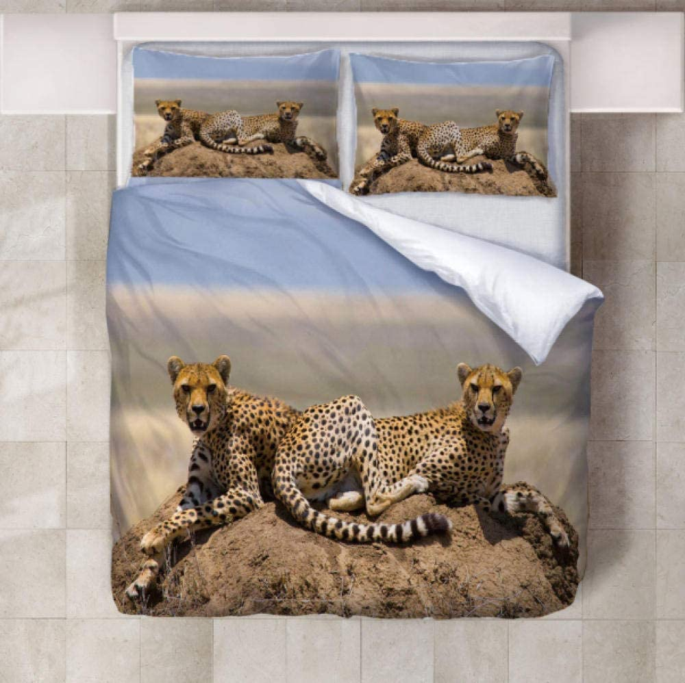 XQJHDHKAD Bedding Set con Funda De Edredón Fundas De Almohada De Microfibra,Dos Leopardos Pálidos En El Páramo Fácil De Lavar-135 X 200Cm