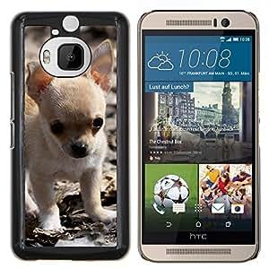 EJOOY---Cubierta de la caja de protección para la piel dura ** HTC One M9Plus M9+ M9 Plus ** --Chihuahua cachorro pequeño perro de mascota bebé