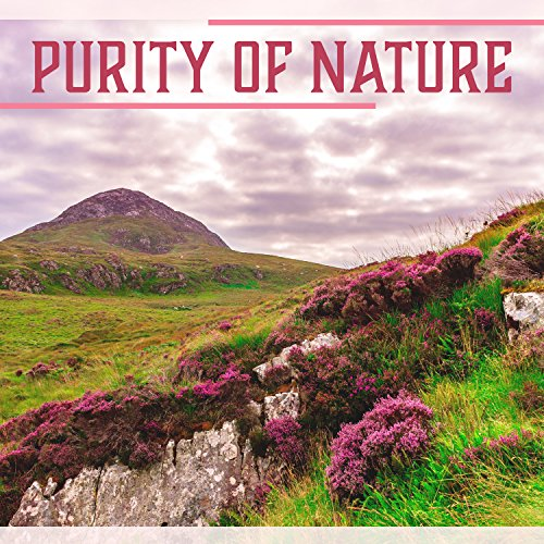 Purity of Nature – Collection of Nature Sounds, Water, Rain, Crickets, Forest Sounds, Garden Sounds, Relaxation and Meditation (Collection Purity)