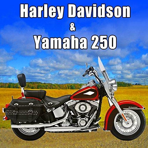 Harley Davidson & Yamaha 250 Sound Effects - 250 Effect