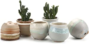 T4U Small Ceramic Succulent Pots with Drainage Set of 6, Mini Pots for Plants, Tiny Porcelain Planter, Air Plant Flower Pots Cactus Faux Plants Containers, Modern Decor for Home and Office