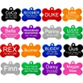 Providence Engraving Pet Id Tags 8 Shapes Colors To Choose From Dog Cat Aluminum