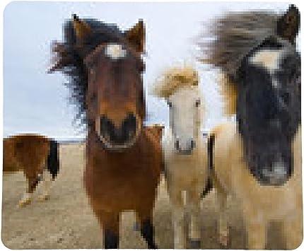 alfombrilla de ratón Los caballos islandeses: Amazon.es ...