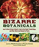 img - for Bizarre Botanicals: How to Grow String-of-Hearts, Jack-in-the-Pulpit, Panda Ginger, and Other Weird and Wonderful Plants book / textbook / text book
