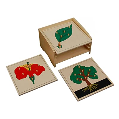 Kid Advance Montessori Botany Puzzle Cabinet with 3 Puzzles : Baby Shape And Color Recognition Toys : Baby
