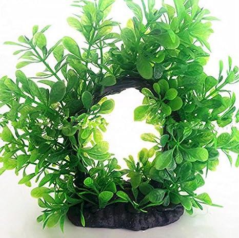 xinyiwei Arco de simulación de hierba de agua para decoración de acuario, color verde: Amazon.es: Hogar
