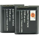 DSTE® アクセサリ NP-BG1 NP-FG1 互換 カメラ バッテリー 2個 対応機種 Cyber-shot DSC-H55 H70 H90 HX20V HX30V N1 N2 T100 W100 W120 W130