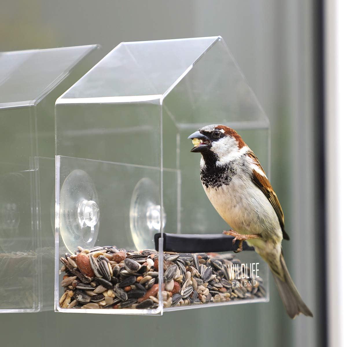 mangiatoia per uccelli passerelle e piccoli uccelli selvatici mangiatoia per uccelli mangiatoia per uccelli in acrilico trasparente con ventose Wildlife Friend Smart mangiatoia