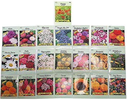 Set of 22 Valley Green Black Duck Brand Heirloom Flower Seeds 22 Different Varieties Non-GMO (Variety Deluxe Flower Garden) by Black Duck Brand