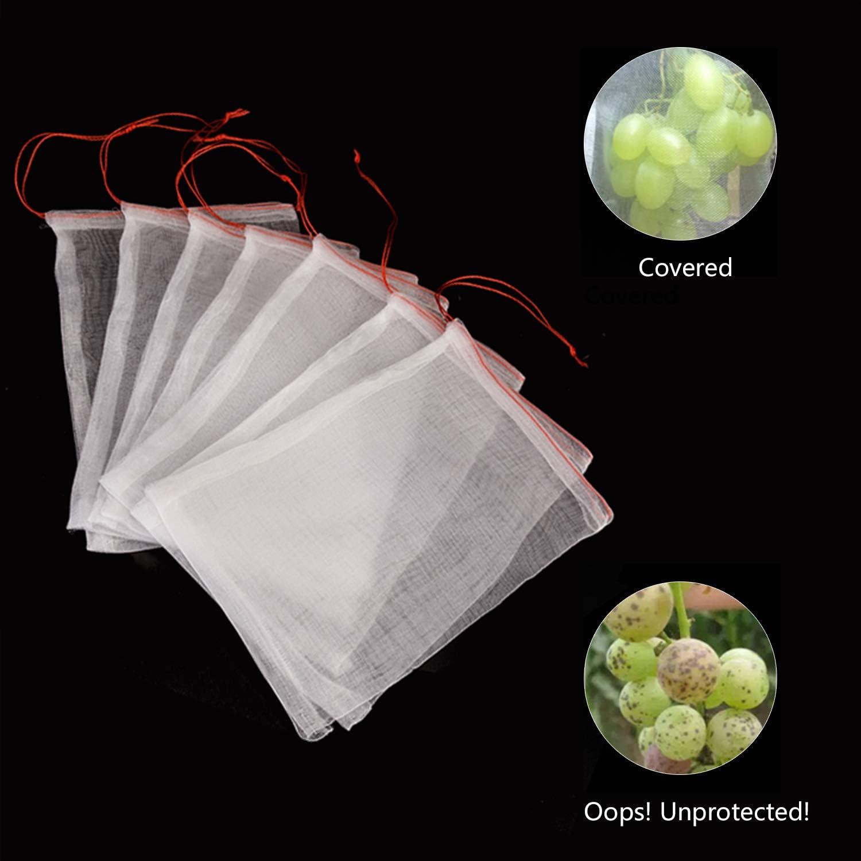 Amazon.com: 100 bolsas de protección de frutas, 10