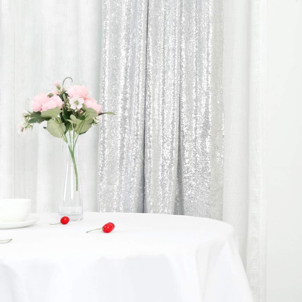 Trlyc Paillettenvorhänge Kulisse Mit Glitzer Silberfarben 2 Paneele 60 X 20 Cm Küche Haushalt