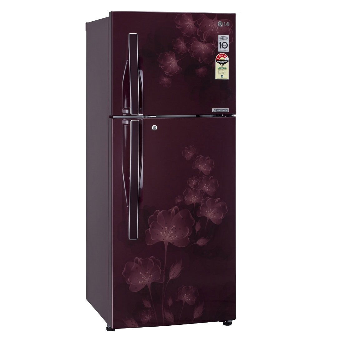 Lg Refrigerator Double Door Home Design