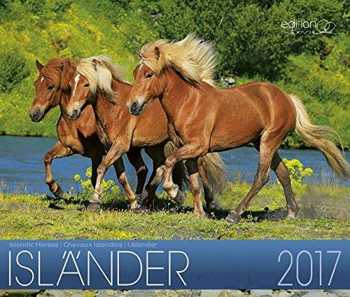 Isländer 2017: Island Pferde