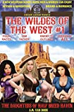 The Wildes of the West #1: The Daughters of Half Breed Haven: Old west fiction of action adventure, romance & western family drama (The Wildes of the West/Half Breed Haven)
