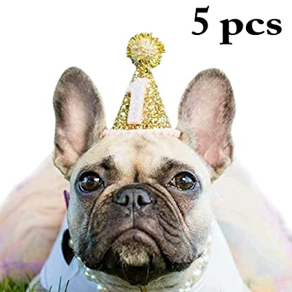 Amazon Legendog Dog Hat 5Pcs Headwear Cute Shiny