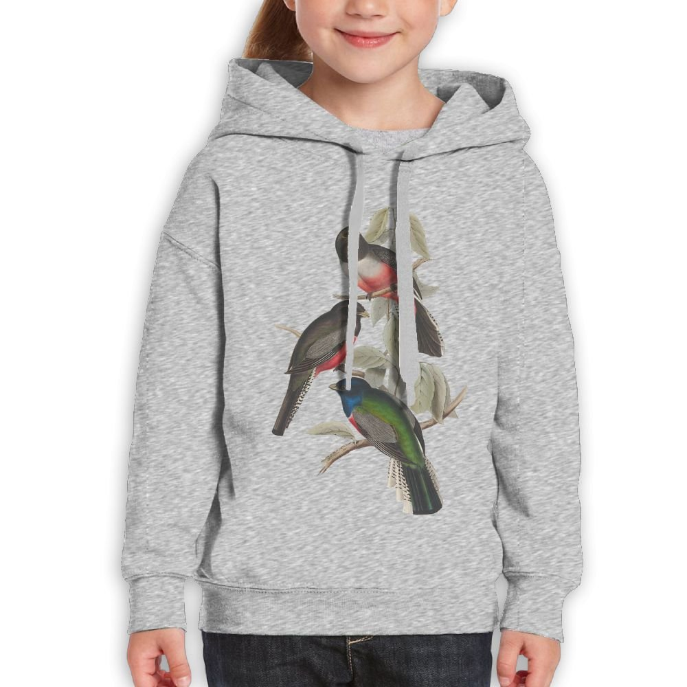 GLSEY Three Birds In The Tree Youth Soft Casual Long-Sleeved Hoodies Sweatshirts