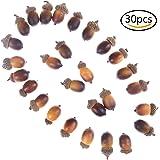 37YIMU 30 Pcs Artificial Fake Small Acorn Set Home Kitchen Decor