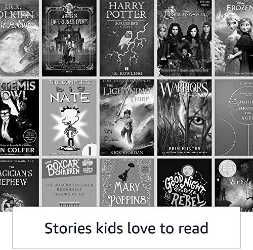 Kindle Kids Edition  Includes access to thousands of books  Rainbow Birds Cover