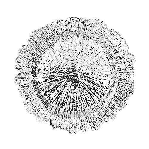 USA Party Flower Elegant Plastic Acrylic Reef Charger Plate, Set of 6 (SILVER, 13.5 inch)